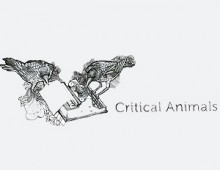 Critical Animals / Director / 2009–2010