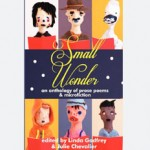 Small Wonder / Spineless Wonders / 2012